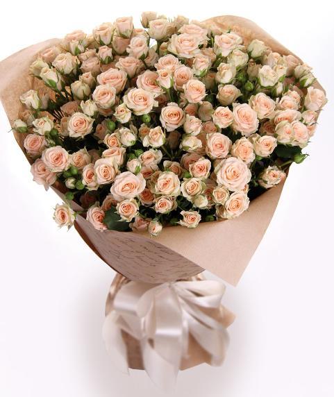 roz 3