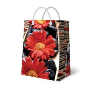 Подарочная сумка 4