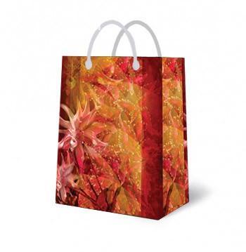 Подарочная сумка 5