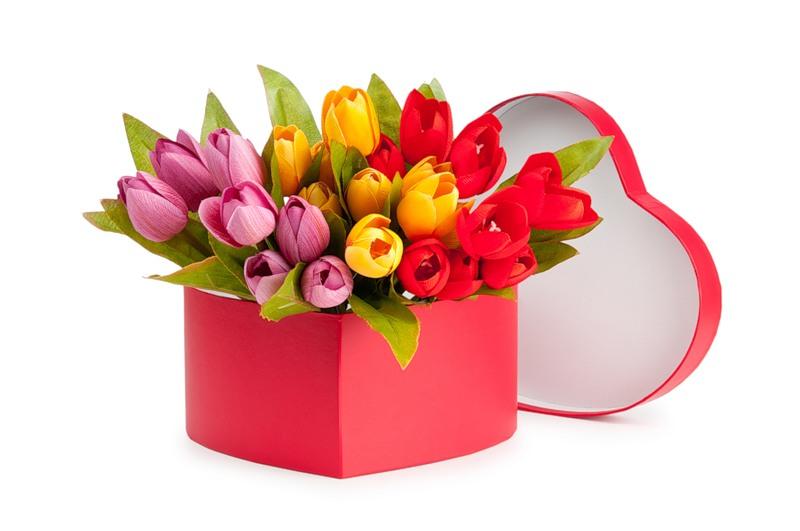 Цветы в коробках №11