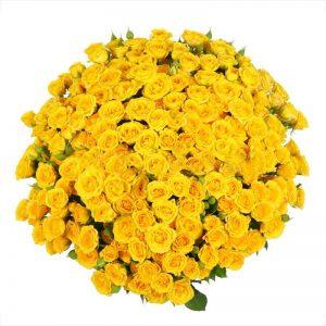 Букеты №11 из кустовых роз