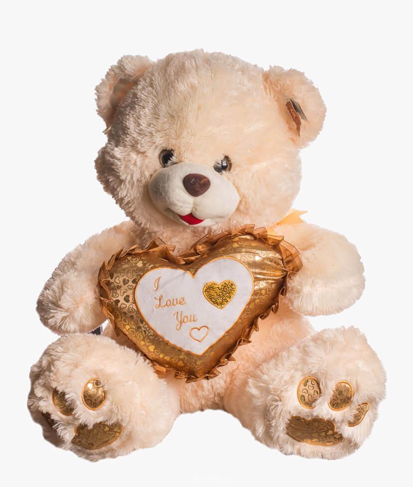 bear-heart